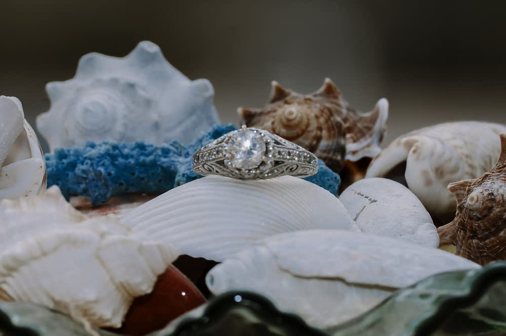 eastern shore weddings photo of engagement ring with sea shells